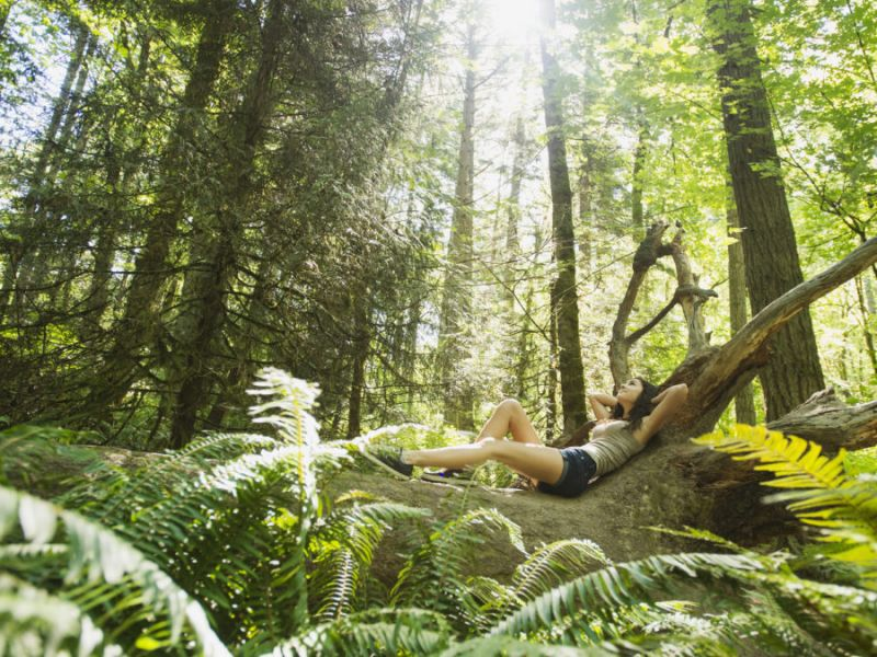 young women sun-bathing in the forest, Healthwinds Spa in Toronto